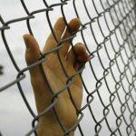 Расторжение брака с осужденным, как развестись, если муж сидит в тюрьме: документы, порядок, сроки